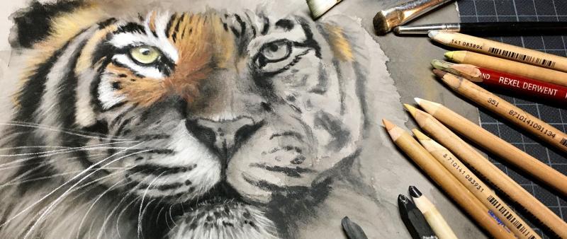 Faszination Tierporträt - Zeichenkohle mit Farbakzenten