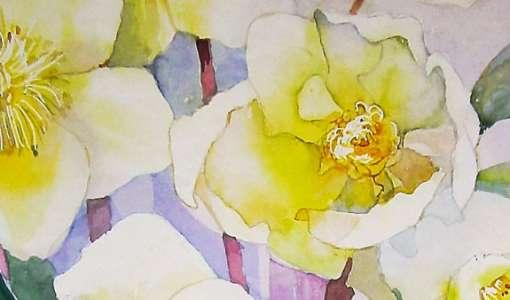 Aquarellmalerei - Weiße Blüten