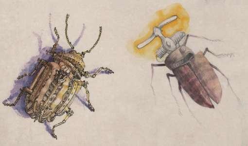 Kreatives Zeichnen und Farbgebung - Insekten und Naturstrukturen