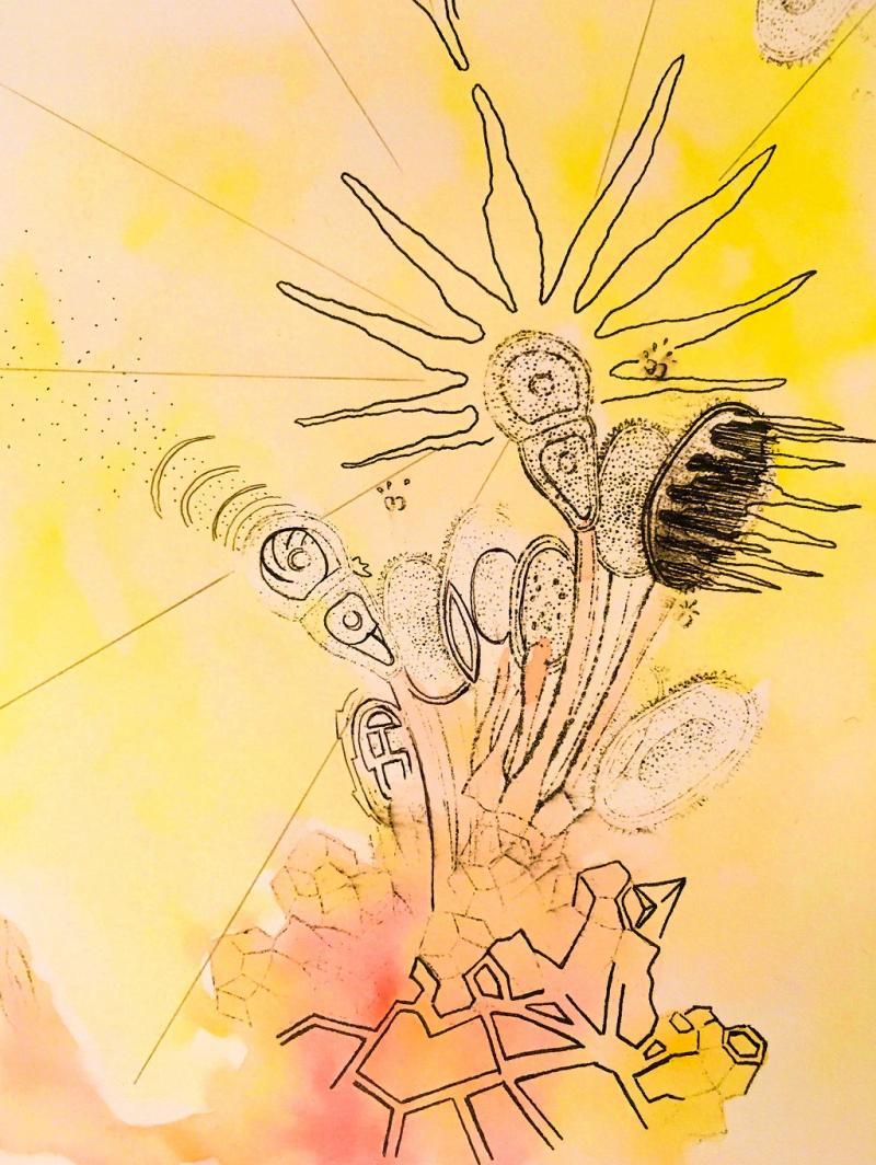 Surreale Zeichnung: Frottage, Collage und phantastische Begegnungen auf Papier