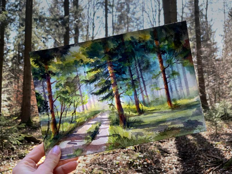 Bäume und Wald in Aquarell